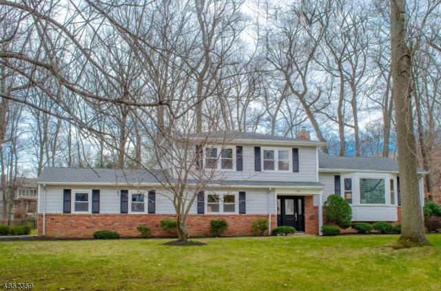 111 Candlewood Dr, New Providence Boro, NJ 07974 (MLS #3524021) :: The Sue Adler Team