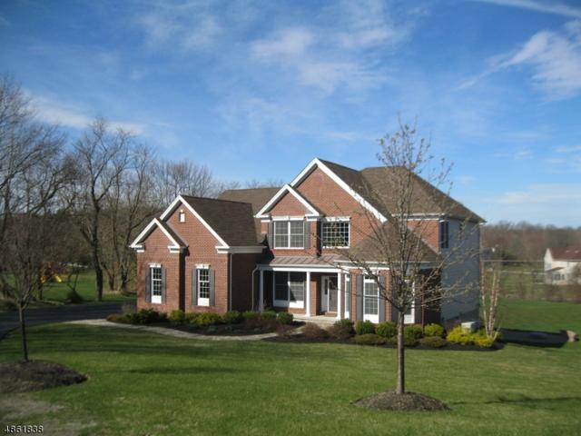 37 High Ridge Ln, Frankford Twp., NJ 07822 (MLS #3524115) :: William Raveis Baer & McIntosh