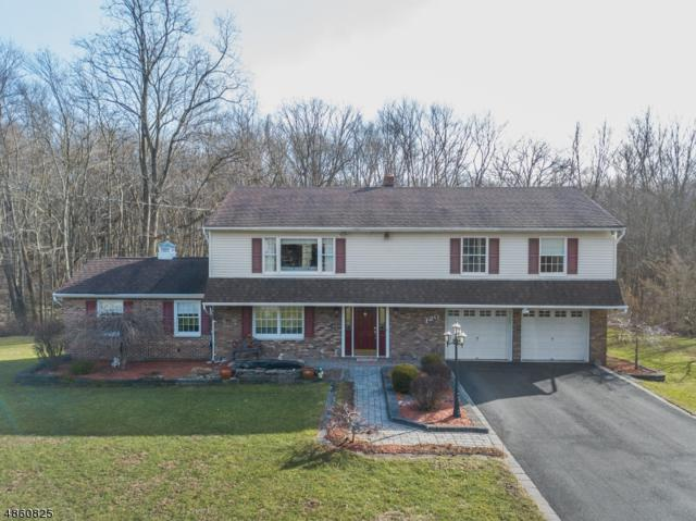 120 Decker Rd, Rockaway Twp., NJ 07866 (MLS #3524366) :: RE/MAX First Choice Realtors
