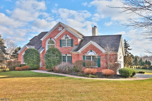23 Small Brook Cir, Randolph Twp., NJ 07869 (MLS #3524447) :: The Douglas Tucker Real Estate Team LLC