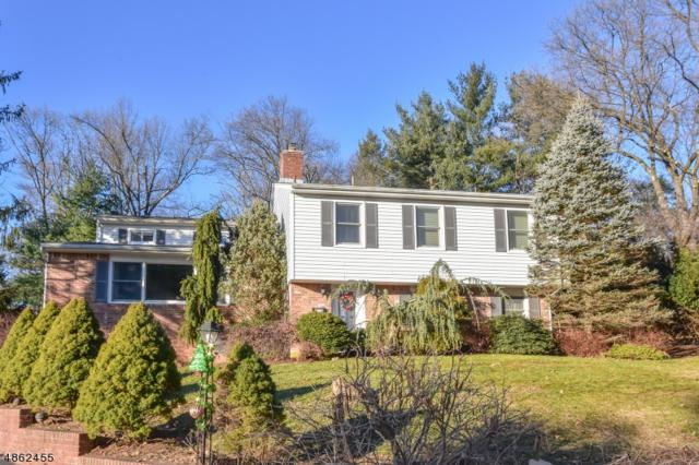 65 Heights Rd, Wayne Twp., NJ 07470 (MLS #3524644) :: William Raveis Baer & McIntosh
