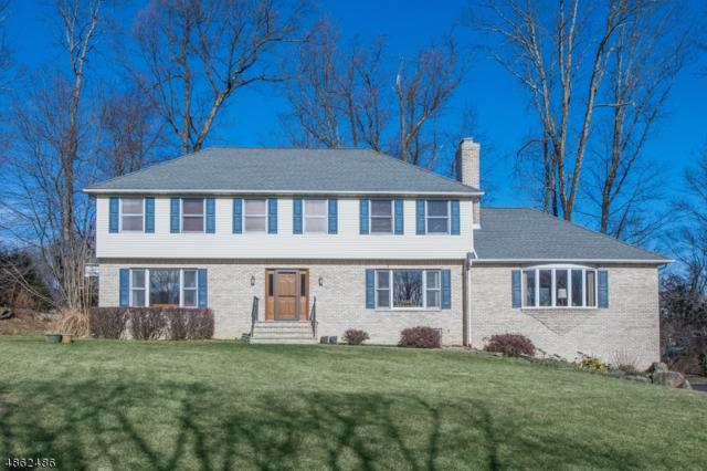 11 Gianna Ct, Randolph Twp., NJ 07869 (MLS #3524931) :: The Douglas Tucker Real Estate Team LLC