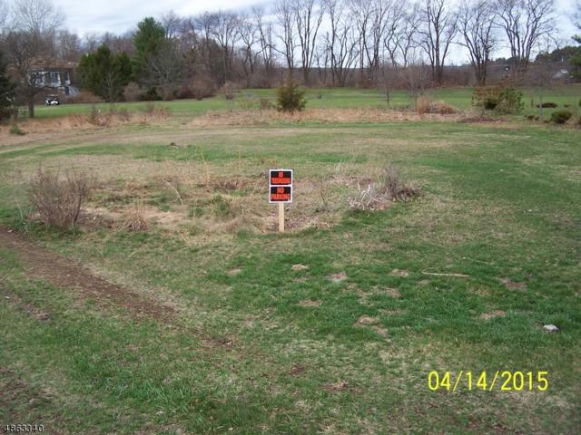 433 N Lake Shr, Montague Twp., NJ 07827 (MLS #3525350) :: The Debbie Woerner Team
