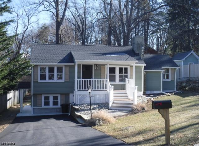 53 Shawnee Trl, Sparta Twp., NJ 07871 (MLS #3525450) :: The Dekanski Home Selling Team