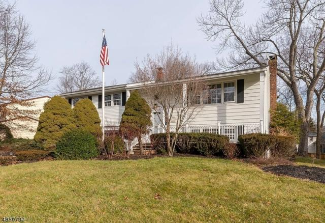 252 Union Ave, New Providence Boro, NJ 07974 (MLS #3525461) :: The Sue Adler Team