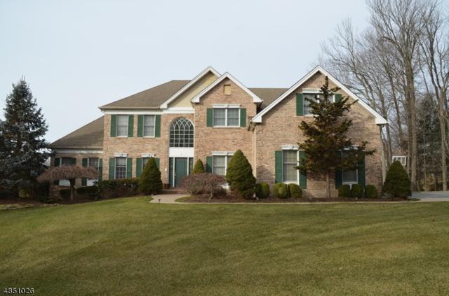 5 Ashley Dr, Mount Olive Twp., NJ 07836 (MLS #3525592) :: Coldwell Banker Residential Brokerage
