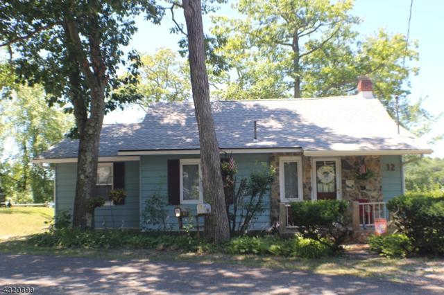 12 Strawberry Dr, Byram Twp., NJ 07821 (MLS #3525643) :: SR Real Estate Group