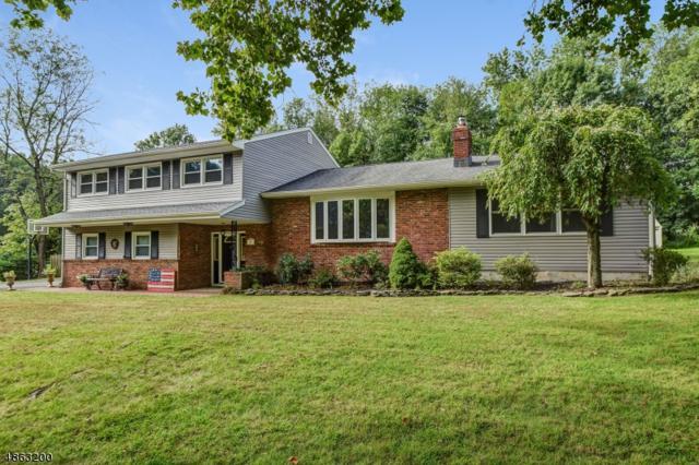 20 Essex Rd, Scotch Plains Twp., NJ 07076 (#3525794) :: Daunno Realty Services, LLC