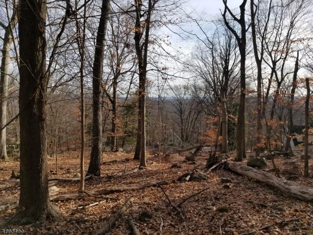 85 Pine Brook Rd, Montville Twp., NJ 07082 (MLS #3525898) :: SR Real Estate Group