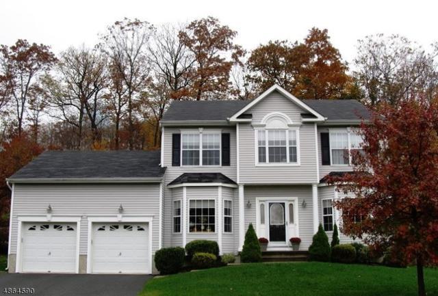 18 Hill Hollow Rd, Jefferson Twp., NJ 07849 (MLS #3526522) :: SR Real Estate Group