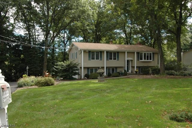 27 Unneberg Ave, Roxbury Twp., NJ 07876 (MLS #3526620) :: SR Real Estate Group