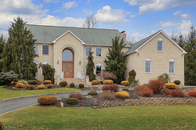 20 Cedar Hollow Dr, Long Hill Twp., NJ 07980 (MLS #3527029) :: William Raveis Baer & McIntosh
