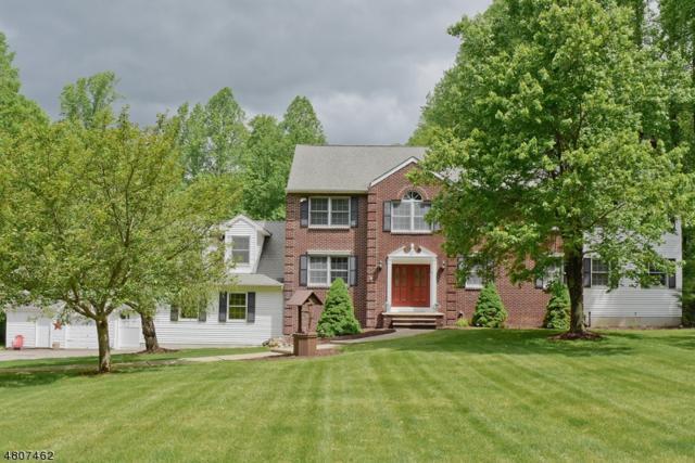 20 Woodfield Rd, Green Twp., NJ 07821 (MLS #3527170) :: William Raveis Baer & McIntosh