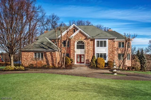 14 Green Mountain Dr, Bernards Twp., NJ 07920 (MLS #3527629) :: Pina Nazario