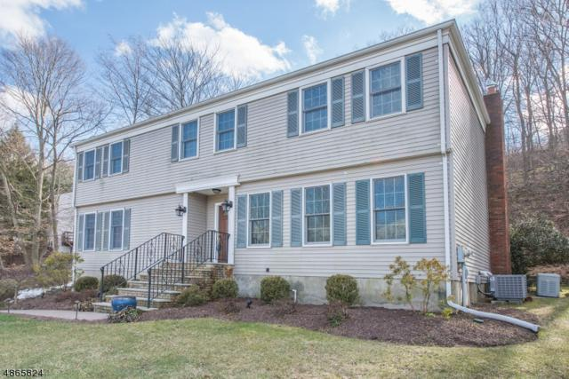 33 Forrest Rd, Randolph Twp., NJ 07869 (MLS #3527849) :: William Raveis Baer & McIntosh