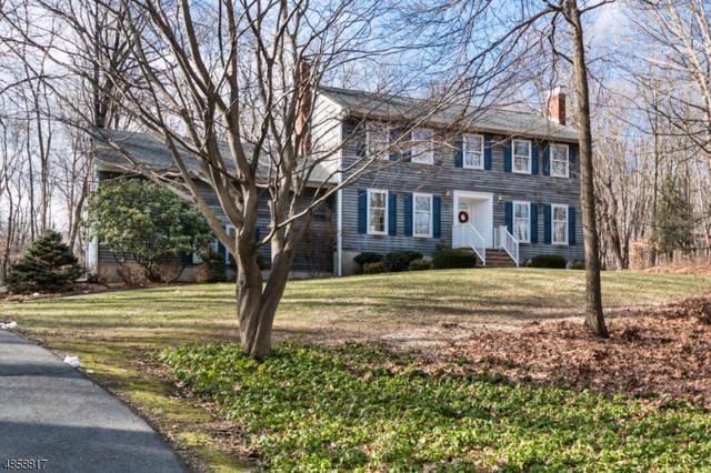 73 Waterloo Rd, Mount Olive Twp., NJ 07828 (MLS #3528164) :: The Sue Adler Team