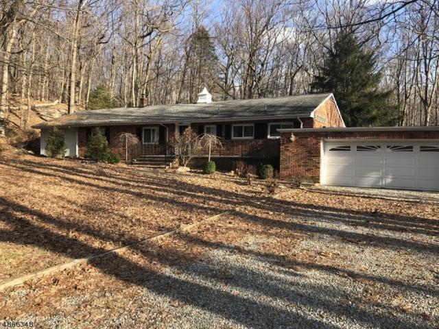 26 Cherry Tree Ln, Kinnelon Boro, NJ 07405 (MLS #3528262) :: The Dekanski Home Selling Team