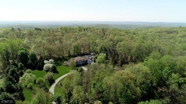 46 Post Ln, Bernardsville Boro, NJ 07924 (MLS #3528765) :: Coldwell Banker Residential Brokerage