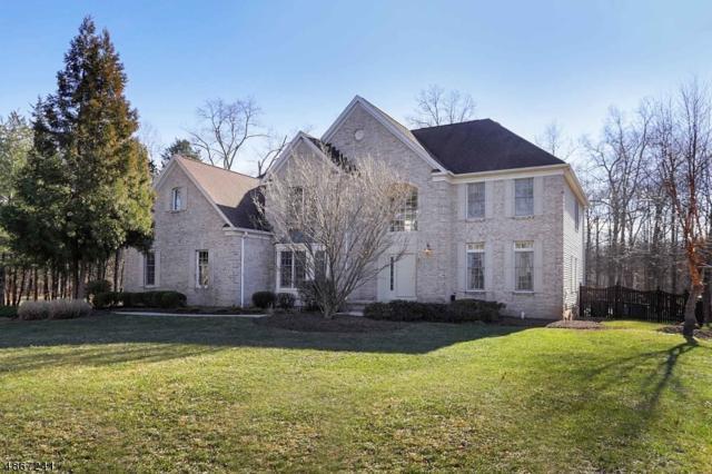 165 North St, Montgomery Twp., NJ 08502 (MLS #3528893) :: Coldwell Banker Residential Brokerage