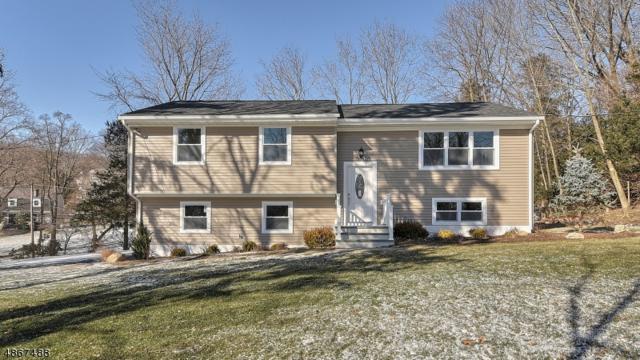 104 Jacksonville Rd, Montville Twp., NJ 07082 (MLS #3528962) :: SR Real Estate Group