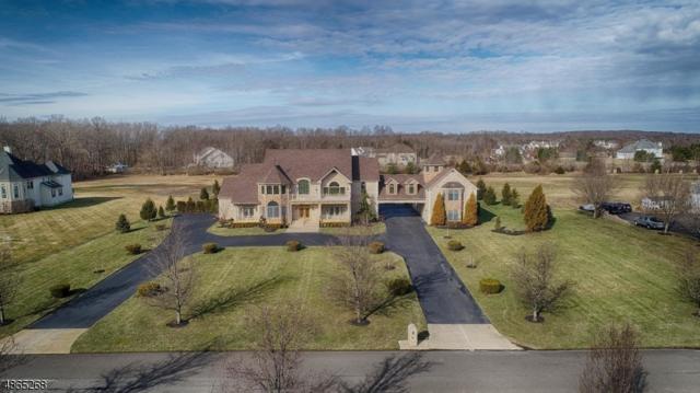 8 Joan Dr, Millstone Twp., NJ 08510 (MLS #3528976) :: Coldwell Banker Residential Brokerage