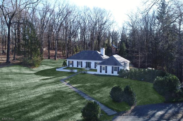 10 Turnbull Ln, Bernardsville Boro, NJ 07924 (MLS #3529038) :: Coldwell Banker Residential Brokerage