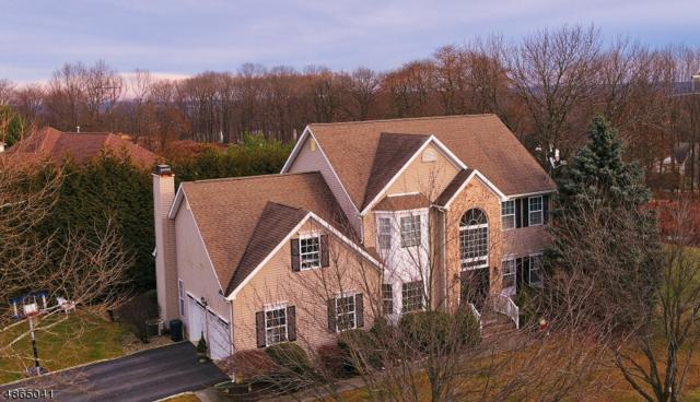 50 Conkling Rd, Roxbury Twp., NJ 07852 (#3529094) :: Group BK