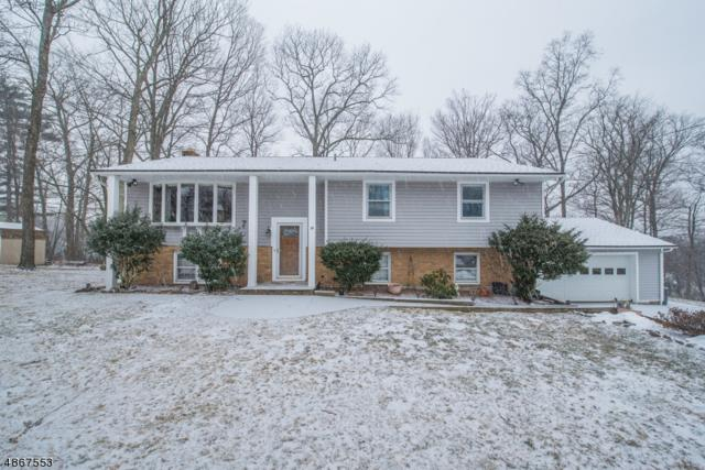 19 Wesley Dr, West Milford Twp., NJ 07480 (MLS #3529169) :: William Raveis Baer & McIntosh