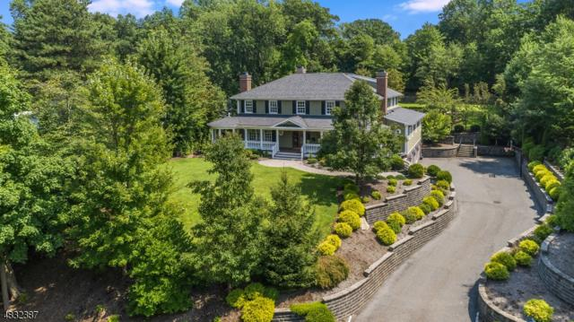 17 Farbrook Drive, Millburn Twp., NJ 07078 (MLS #3529171) :: SR Real Estate Group
