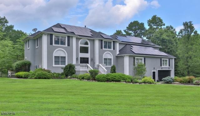 8 Mineral Spring Rd, Millstone Twp., NJ 08510 (MLS #3529287) :: Coldwell Banker Residential Brokerage