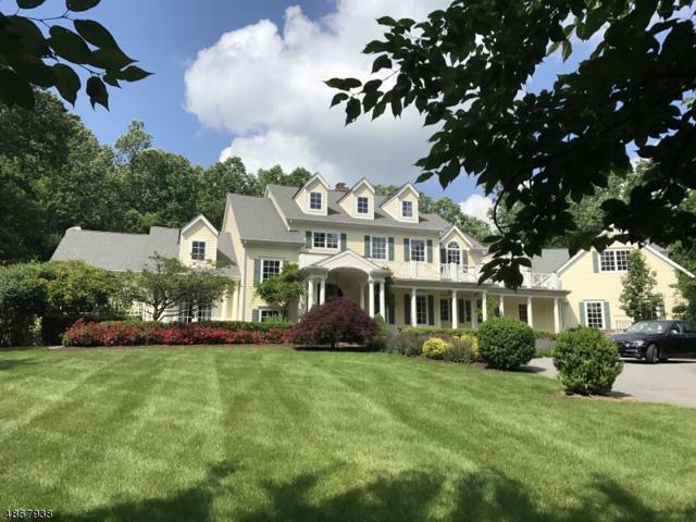 5 Cramer Ln, Mendham Twp., NJ 07945 (MLS #3529475) :: SR Real Estate Group