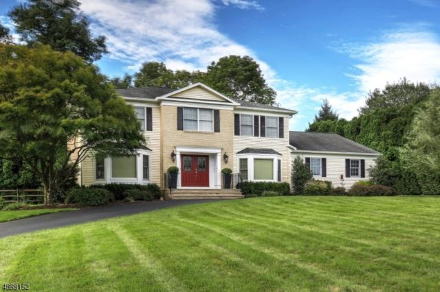 3 Sutton Ct, Mendham Boro, NJ 07945 (MLS #3529658) :: William Raveis Baer & McIntosh