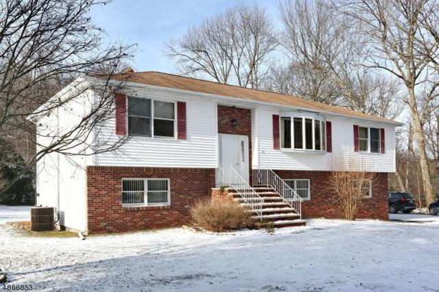 111 Carletondale Rd, Ringwood Boro, NJ 07456 (MLS #3529689) :: William Raveis Baer & McIntosh