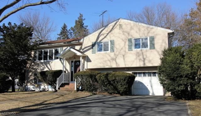 12 Burnside Place, Wayne Twp., NJ 07470 (MLS #3529822) :: William Raveis Baer & McIntosh