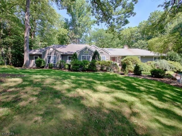 111 Pollard Rd, Mountain Lakes Boro, NJ 07046 (MLS #3529951) :: RE/MAX First Choice Realtors