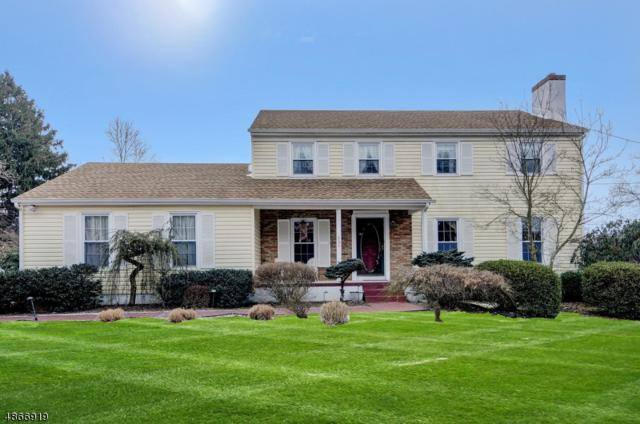 751 Route 518, Montgomery Twp., NJ 08558 (#3530076) :: Group BK