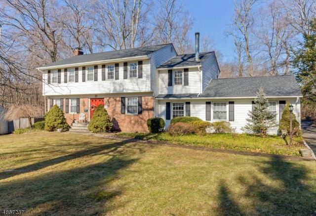 55 Townsend Dr, Florham Park Boro, NJ 07932 (MLS #3530219) :: SR Real Estate Group