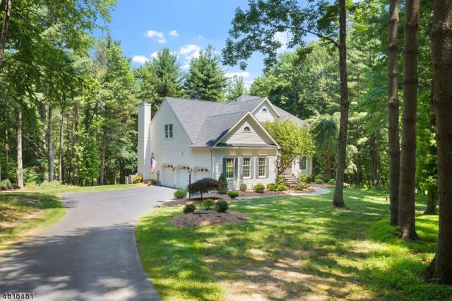 14 Talia Rd, Raritan Twp., NJ 08822 (MLS #3530407) :: Coldwell Banker Residential Brokerage