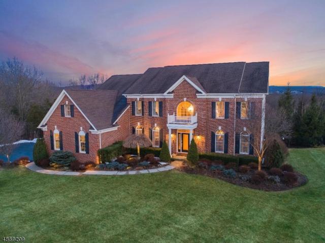60 Flagstone Hill Rd, Wantage Twp., NJ 07461 (MLS #3530616) :: William Raveis Baer & McIntosh