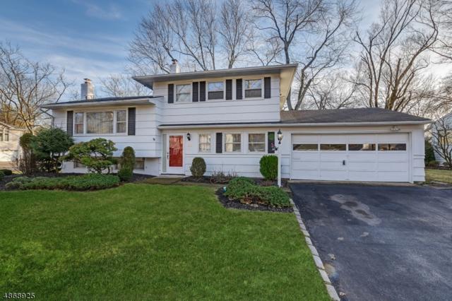 20 Laurel Dr, Springfield Twp., NJ 07081 (MLS #3530837) :: The Dekanski Home Selling Team