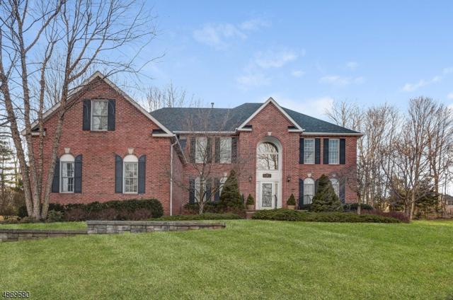 38 Barbara Dr, Randolph Twp., NJ 07869 (MLS #3530972) :: The Douglas Tucker Real Estate Team LLC