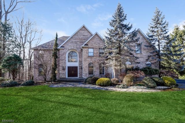 57 Barbara Dr, Randolph Twp., NJ 07869 (MLS #3530973) :: The Douglas Tucker Real Estate Team LLC