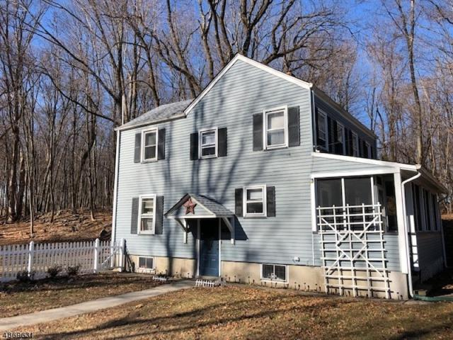 442 Mt Hope Rd, Rockaway Twp., NJ 07866 (MLS #3531085) :: William Raveis Baer & McIntosh