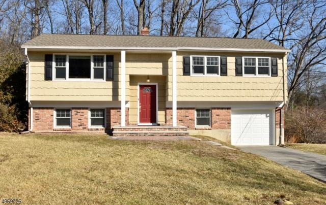 8 Holly Dr, Denville Twp., NJ 07834 (MLS #3531202) :: Coldwell Banker Residential Brokerage