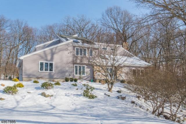4 Tulip Tree Ter, Kinnelon Boro, NJ 07405 (MLS #3531254) :: The Dekanski Home Selling Team