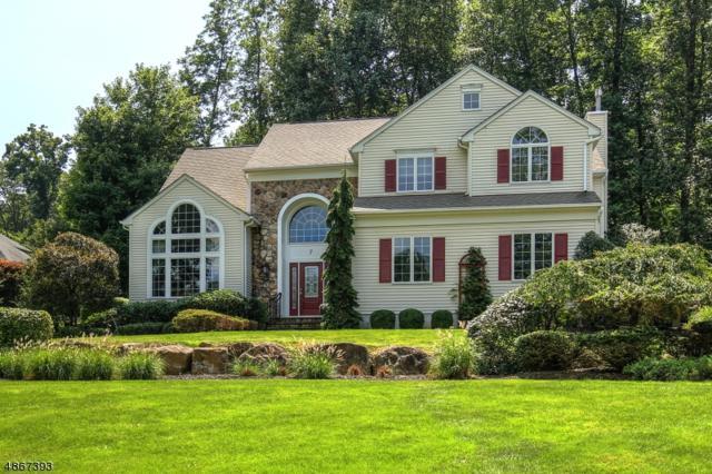 7 Blanchard Ct, Randolph Twp., NJ 07869 (MLS #3531365) :: Coldwell Banker Residential Brokerage