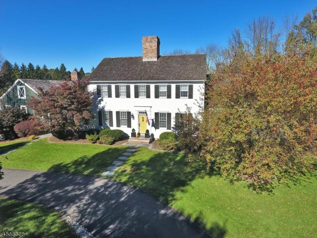 7 Barberry Row, Chester Twp., NJ 07930 (MLS #3531475) :: Coldwell Banker Residential Brokerage