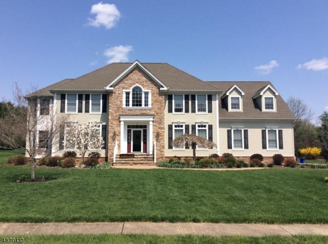 6 Red Fox Ct, Montgomery Twp., NJ 08558 (MLS #3531591) :: Coldwell Banker Residential Brokerage