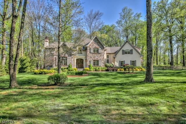 6 Buddy Ln, Mendham Twp., NJ 07960 (MLS #3531660) :: SR Real Estate Group