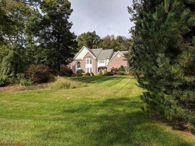 5 Alexandra Ln, Washington Twp., NJ 07853 (MLS #3531814) :: Coldwell Banker Residential Brokerage